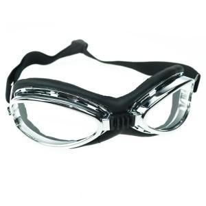 Cyberbrille Poizen Industries
